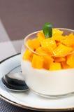芒果panna陶砖 库存图片