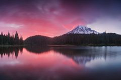 芒特雷尼尔风景看法横跨反射湖反射了 在芒特雷尼尔的桃红色日落光在喀斯喀特山脉 免版税库存照片
