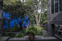 芙烈达・卡萝博物馆蓝色议院und庭院 库存照片
