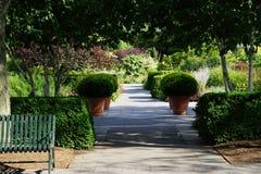 芙烈达・卡萝艺术,庭院,生活第2部分7 免版税库存照片