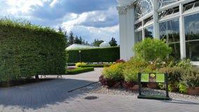 芙烈达・卡萝艺术,庭院,生活第2部分30 库存照片