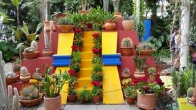 芙烈达・卡萝艺术,庭院,生活第2部分37 免版税库存图片