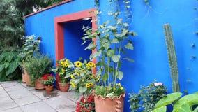 芙烈达・卡萝艺术,庭院,生活第2部分61 库存图片