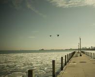 芝加哥港口冬天 免版税库存照片