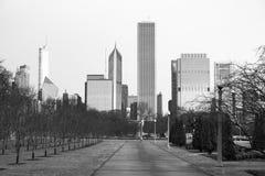 芝加哥街市市地平线千禧公园冬天 免版税图库摄影