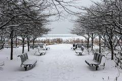 芝加哥长凳 免版税图库摄影