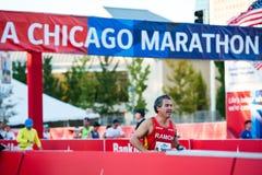 2013年芝加哥马拉松 免版税图库摄影
