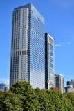 芝加哥, Illiois街市现代塔  免版税库存图片