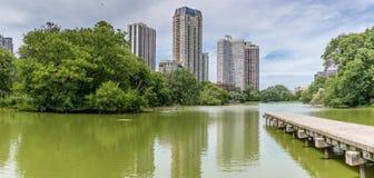 芝加哥`的s林肯公园池塘 图库摄影