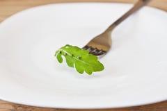 芝麻菜叶子在牌照的 免版税库存图片