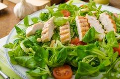 芝麻菜和菜用结页草与烤chiken 免版税库存图片
