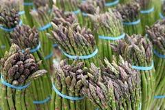 芦笋捆绑新鲜的农场 免版税图库摄影