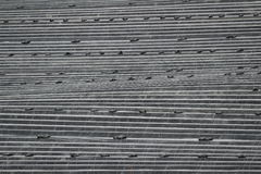 芦笋耕种 库存照片