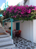 芦粟海岛,希腊街道  库存照片
