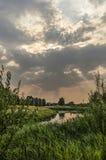 芦苇、河和云彩 免版税库存照片