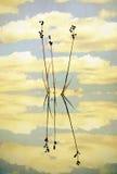 芦苇和反射在一个静池 向量例证