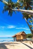 芦苇小屋和可可椰子 免版税库存照片