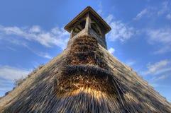 芦苇茅草屋顶细节  库存图片