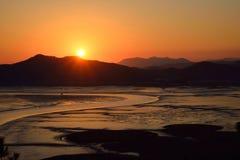 芦苇领域日落在顺天市海湾的 库存图片