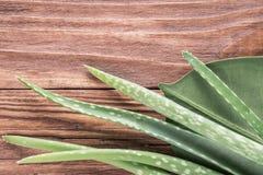 芦荟在木桌上的维拉叶子 库存照片