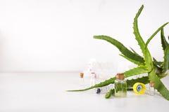 芦荟在玻璃瓶的维拉油有切的芦荟维拉胶凝体 免版税图库摄影