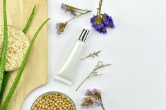 芦荟维拉植物,自然skincare美容品,有绿色草本叶子的化妆瓶容器 免版税库存照片