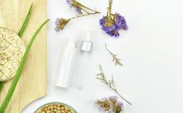 芦荟维拉植物,自然skincare美容品 有绿色草本叶子的化妆瓶容器 免版税库存图片