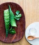 芦荟维拉设计纯净的手工制造太阳烧伤的叶子切片 免版税库存照片