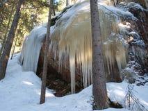 芬兰冬天 免版税库存照片