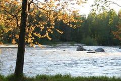 芬兰在城镇附近的kotka langikoski 免版税库存照片