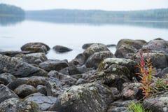 芬兰湖 库存照片