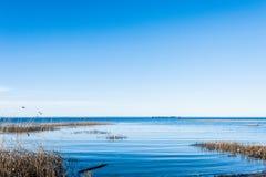 芬兰湾视图 免版税库存图片