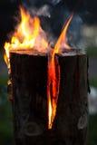 芬兰蜡烛 图库摄影