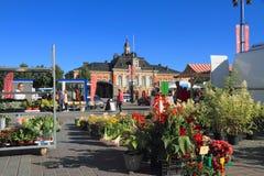 芬兰,库奥皮奥:旅游业-有花摊和香港大会堂的市场 图库摄影