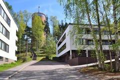 芬兰,黑诺拉 免版税库存照片
