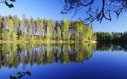 芬兰:由一个镇静湖的春天 免版税库存图片