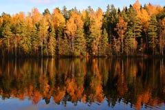 芬兰:由湖的秋天颜色 免版税库存图片