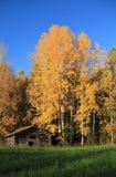 芬兰:秋天田园诗 免版税库存照片