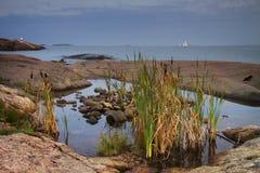 芬兰:赫尔辛基海岸  免版税图库摄影