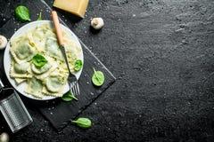 芬芳馄饨用巴马干酪和草本 图库摄影