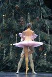 芭蕾双人舞 免版税库存图片