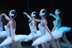 芭蕾天鹅湖 语句 运动的芭蕾舞女演员 库存图片