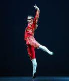 芭蕾捷克国家戏院马戏团 库存照片
