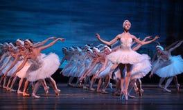 芭蕾湖执行皇家俄国天鹅 免版税库存照片