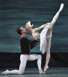 芭蕾湖执行皇家俄国天鹅 免版税库存图片