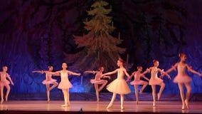 芭蕾珍珠展示 股票录像