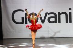 芭蕾美好的舞蹈演员设计例证 免版税库存图片