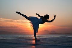 芭蕾美好的舞蹈演员设计例证 库存照片