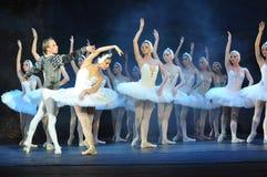 芭蕾舞团 库存照片