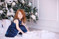 芭蕾舞女演员一点 奶油被装载的饼干 蓝色礼服maike 圣诞节礼品 库存图片